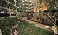 bansko-guiness-hotel-zimovanje-bugarska (16)